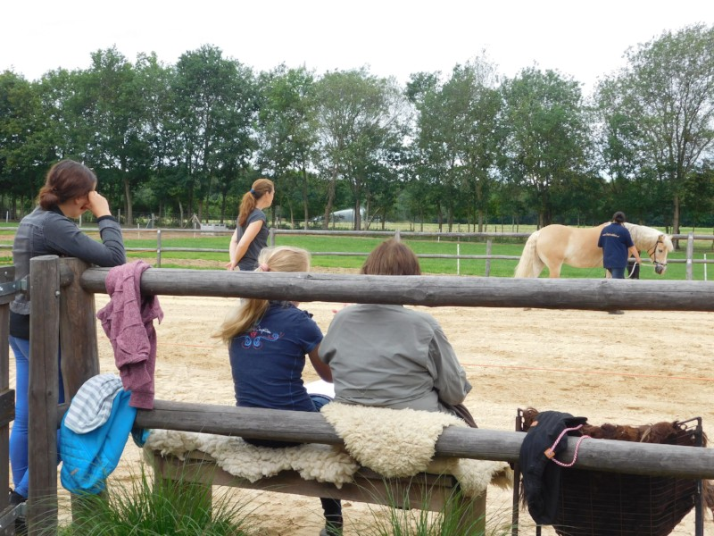 Lesmiddag ST Drenthe