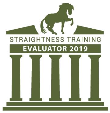ST-Evaluator_2019-2