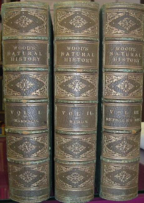 The Illustrated Natural History. Three volume set