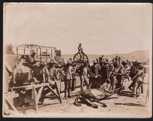 ORIGINAL PHOTOGRAPHS:  THE GUERILLA WAR IN THE CAPE COLONY
