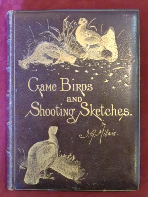 Game Birds and Shooting Sketches