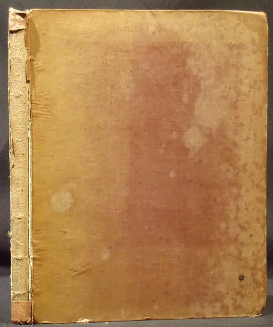 MEMOIR ON THE PEARLY NAUTILUS (NAUTILUS POMPILIUS, LINN.)