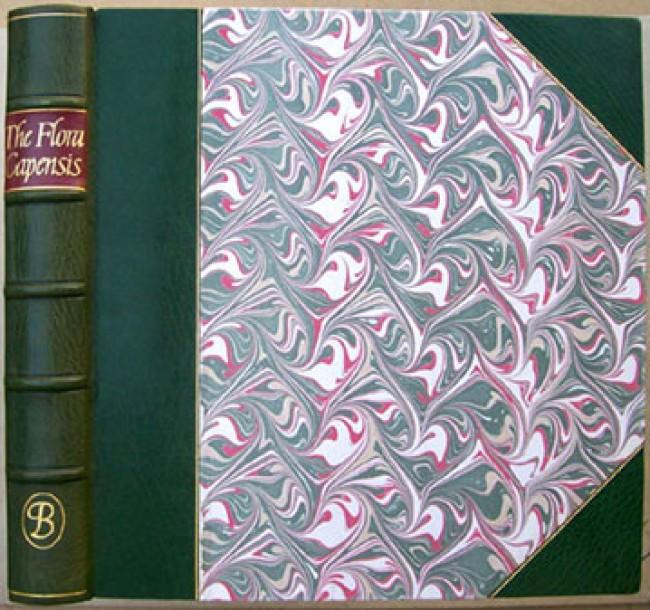 The Flora Capensis of Jakob and Johann Philipp Breyne