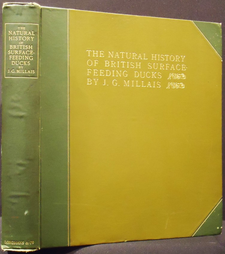 THE NATURAL HISTORY OF THE BRITISH SURFACE - FEEDING DUCKS (Limited edition)