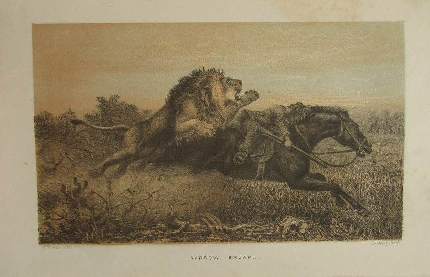 African Hunting and Adventure from Natal to the Zambesi