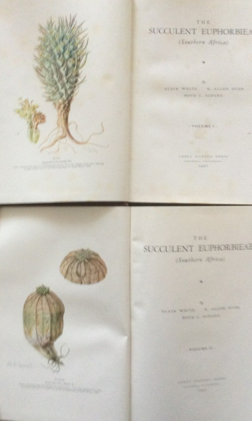 The Succulent Euphorbieae (Southern Africa). Vols I and II. 1941