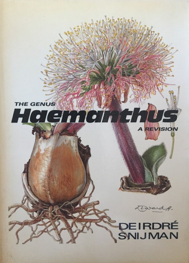 A Revision of the Genus Haemanthus L (Amaryllidaceae)