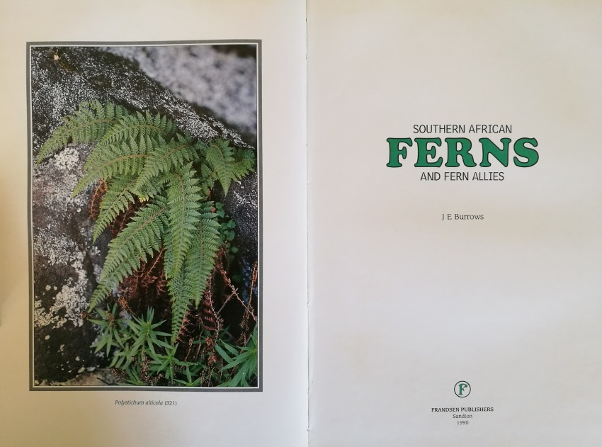 Southern African Ferns and Fern Allies