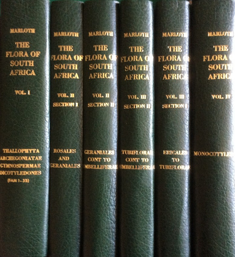 The Flora of South Africa. Vols I, II (2 sections), III (2 sections) and IV. 1913-1932 (newly rebound)