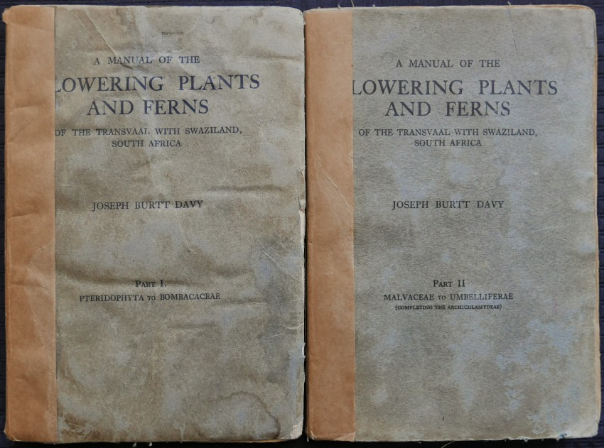 A MANUAL OF THE FLOWERING PLANTS AND FERNS OF THE TRANSVAAL, WITH SWAZILAND, SOUTH AFRICA - 2 Volumes