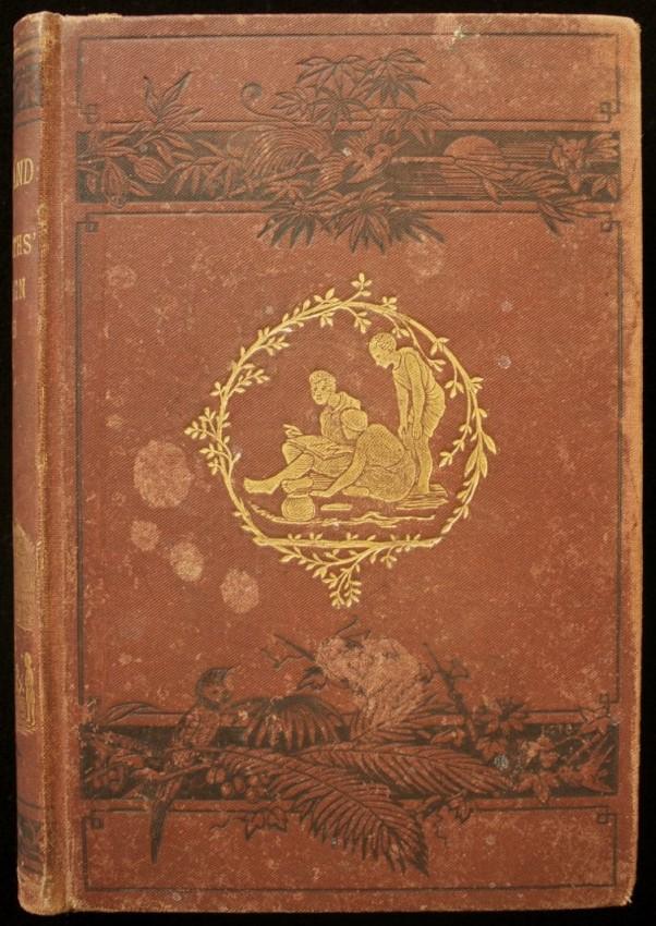 Kafirland : A Ten Months' Campaign (1879)