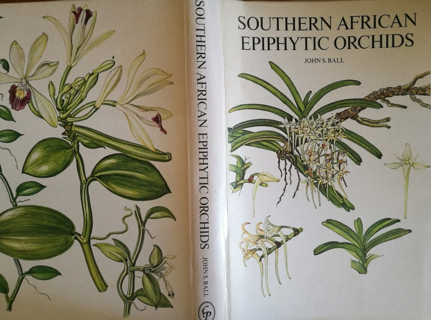 Epiphytic Orchids (1978)