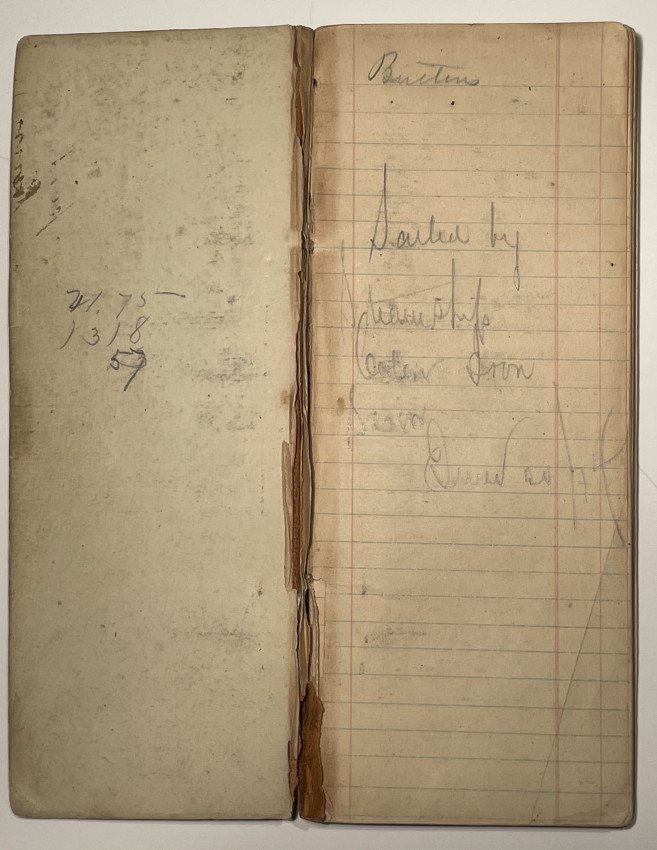 Manuscript diary of a voyage from New York to California June 20 - July 15. 1874