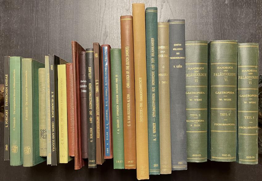 [SCHOLAR'S SHELF] Large lot of 20th Century European Conchology & Related Books, Monographs, etc.