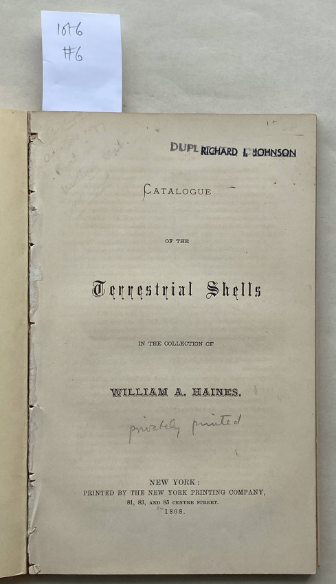 Catalogue of the Terrestrial Shells in the collection of William A. Haines.