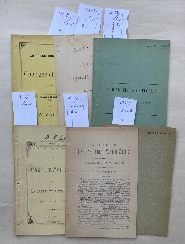 [A collection of six works, one signed].
