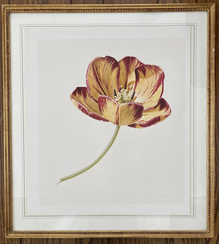 [TULIPS: two large colored lithographic plates, each signed by the artist in pencil, and numbered].