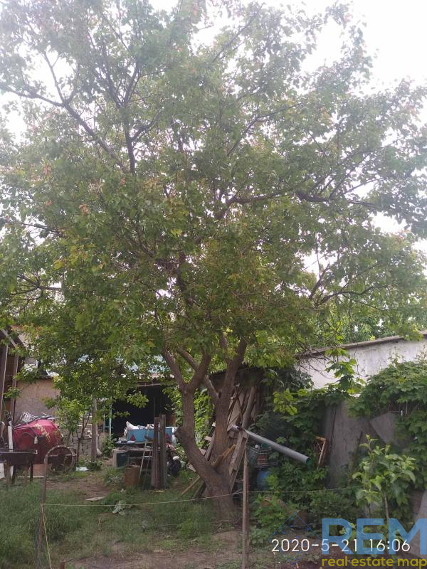 Предлагаю купить дом в Аркадии | Агентство недвижимости Юго-Запад