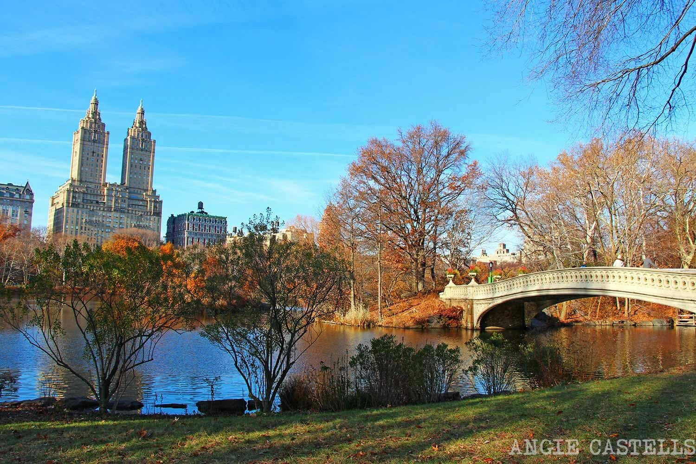 Gu 237 A De Central Park Y Ruta A Pie Por El Parque Con Mapa