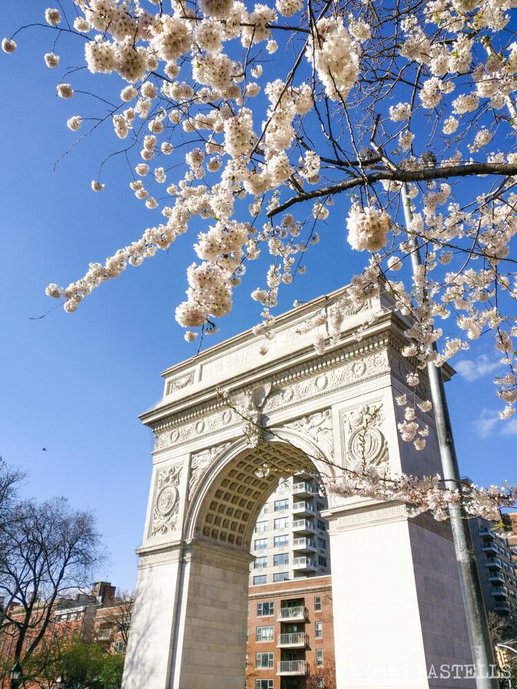 Qué hacer en mayo en Nueva York - Washington Square Park