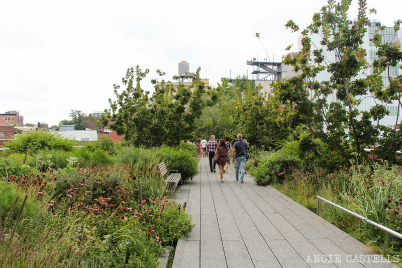 Guia High Line Nueva York
