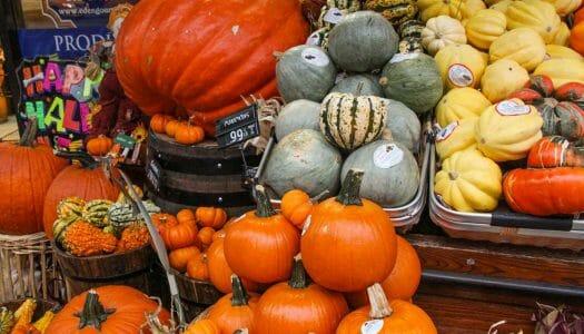 Qué comer en Nueva York en otoño