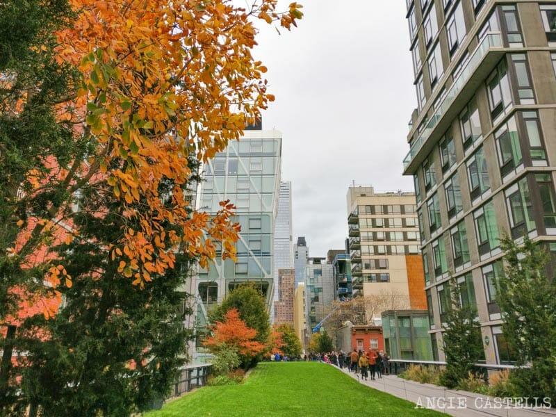 Qué hacer en otoño en Nueva York: la High Line