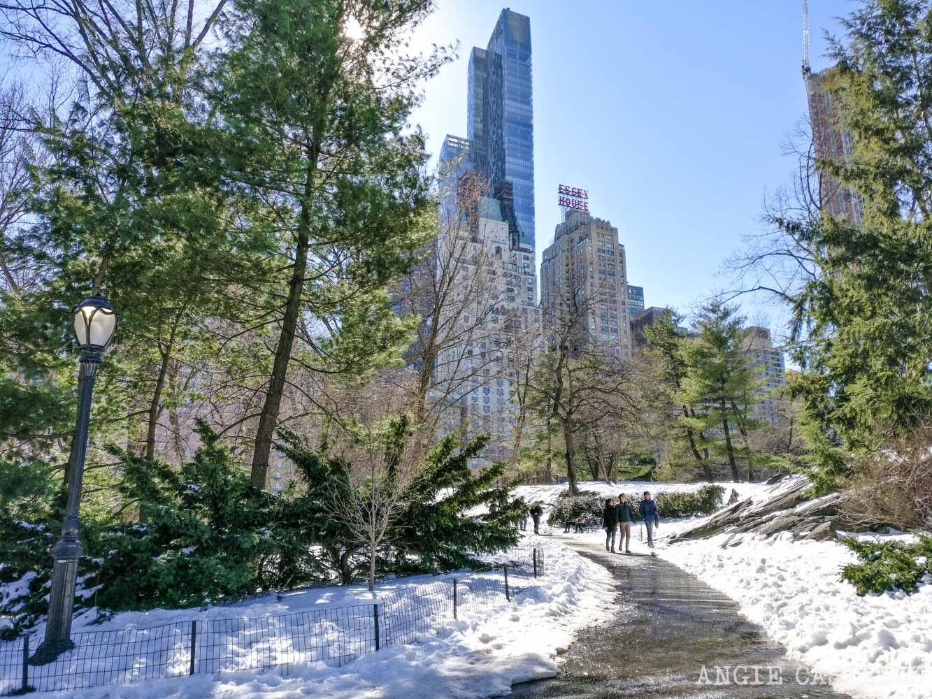 Marzo en Nueva York - Qué hacer y tiempo (2019)