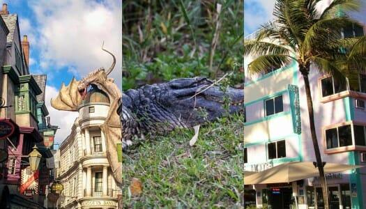 Ruta por Florida en 4 días: Miami, Everglades y Universal Orlando