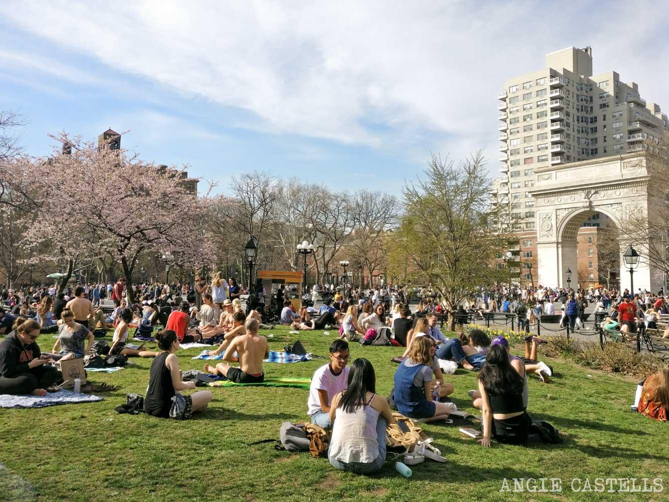 Qué hacer en Nueva York en primavera: la plaza Washington Square