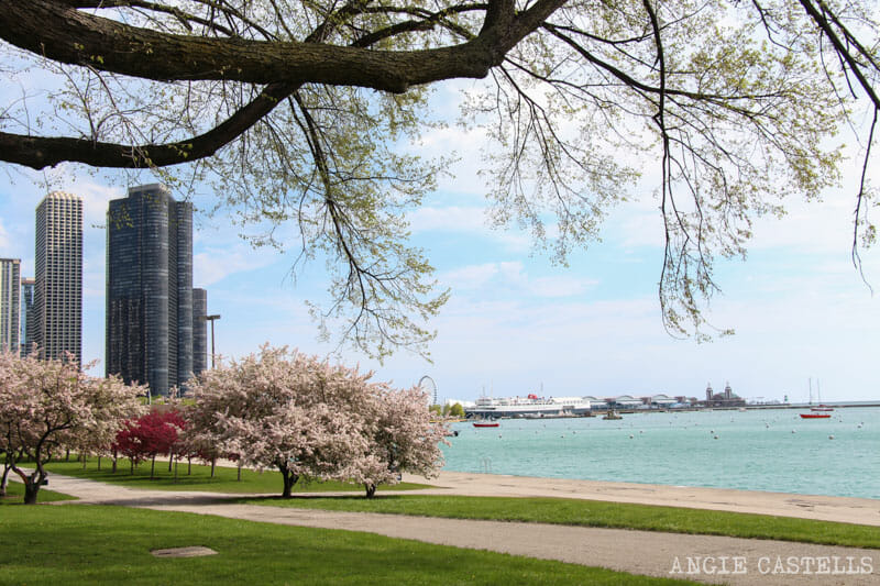 Qué ver en Chicago en dos días - Lago Michigan