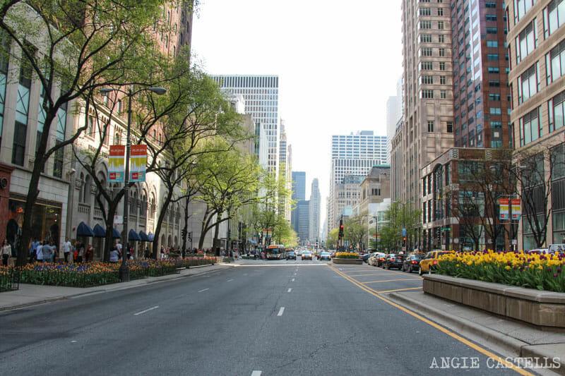 Qué ver en Chicago en dos días - Magnificent Mile