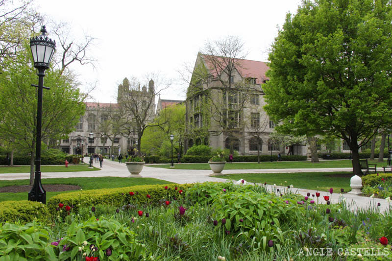 Qué ver en Chicago en dos días - University of Chicago y Southside