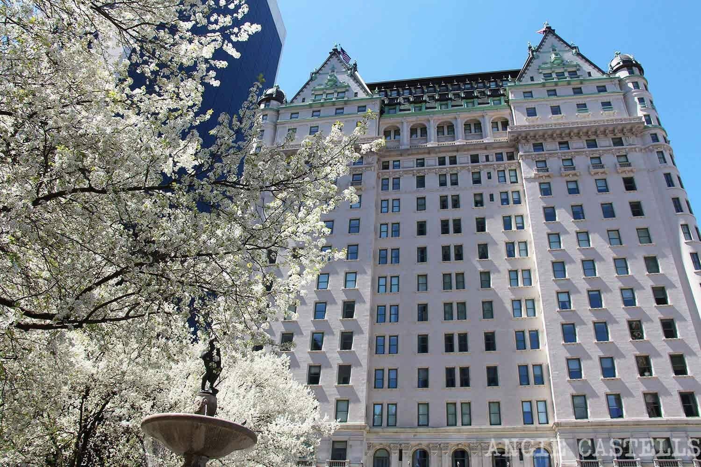 Consejos para encontrar hotel en Nueva York - Plaza