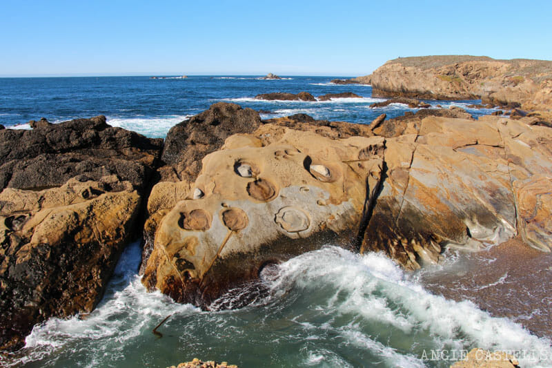 Ruta por el Big Sur y la Pacific Coast Highway, en California - Point Lobos