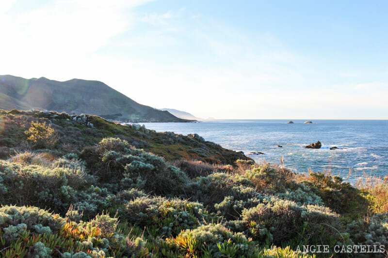 Ruta por el Big Sur y la Pacific Coast Highway, en California - Garrapata State Park