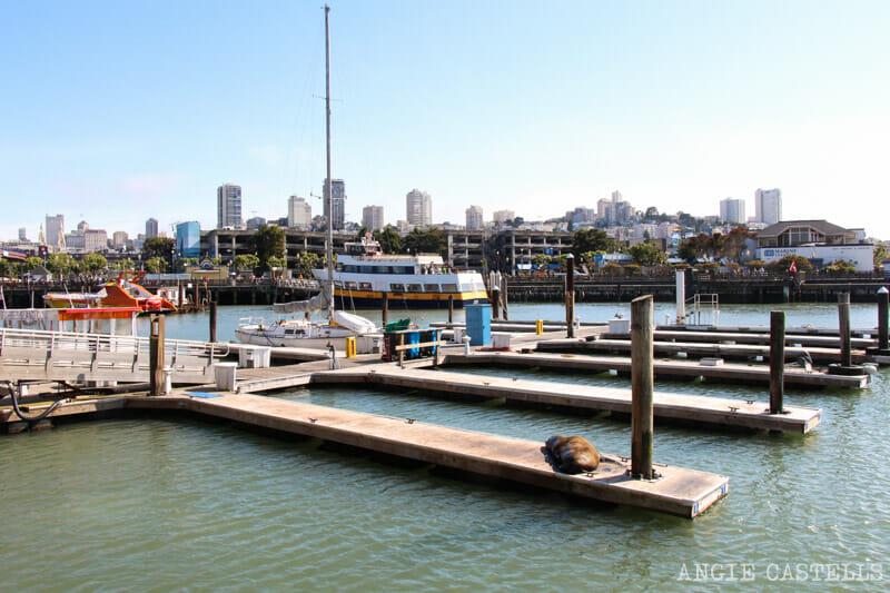 Qué ver en San Francisco: Fishermans Wharf