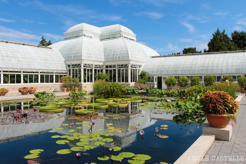 Visitar el Jardín Botánico de Nueva York, en el Bronx