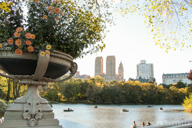 Que-ver-Nueva-York-un-dia-Ruta-Manhattan-Central-Park-Bow-Bridge