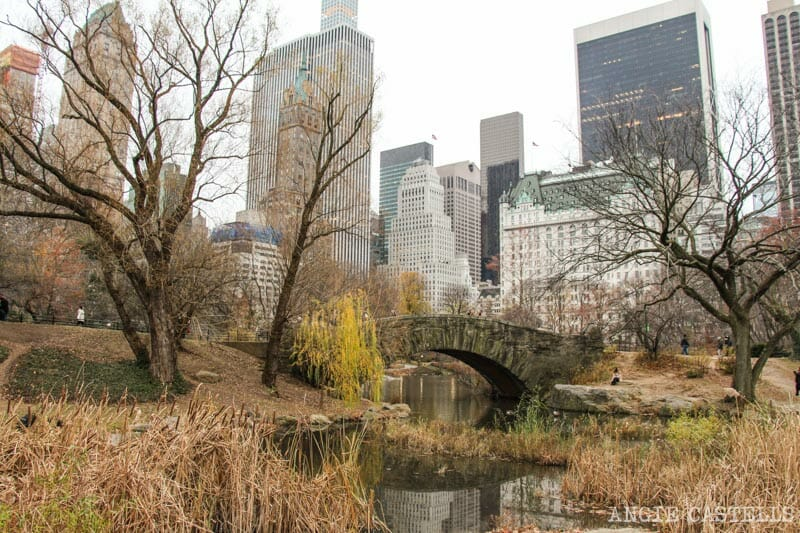 Que-ver-Nueva-York-un-dia-Ruta-Manhattan-Central-Park-Gapstow-Bridge