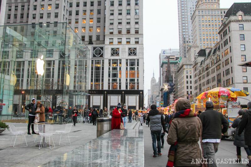 Que-ver-Nueva-York-un-dia-Ruta-Manhattan-Quinta-Avenida
