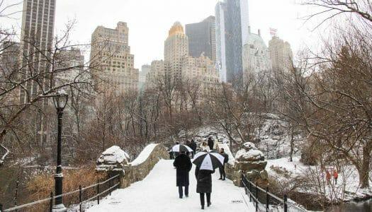 El mes de febrero en Nueva York (2018)