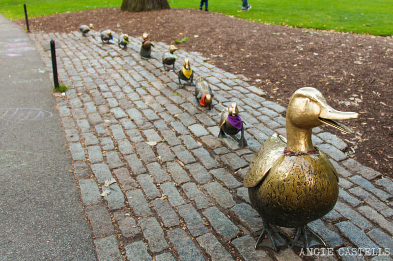 Qué ver en Boston en una excursión desde Nueva York - Make Way for ducklings