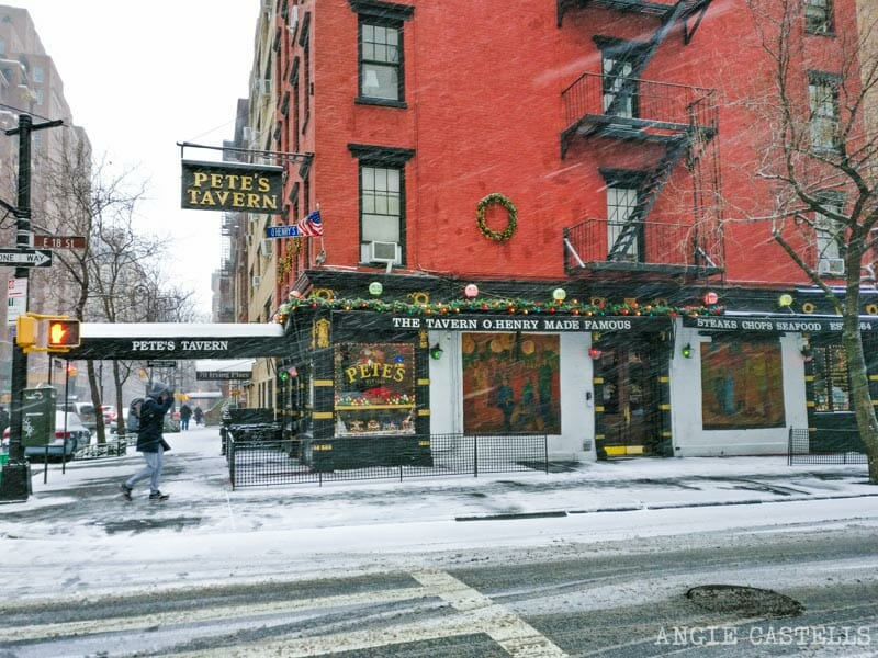 Qué hacer en enero en Nueva York - Nieve y nevadas