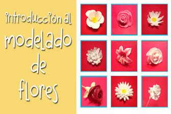 Información Introducción al modelado de flores