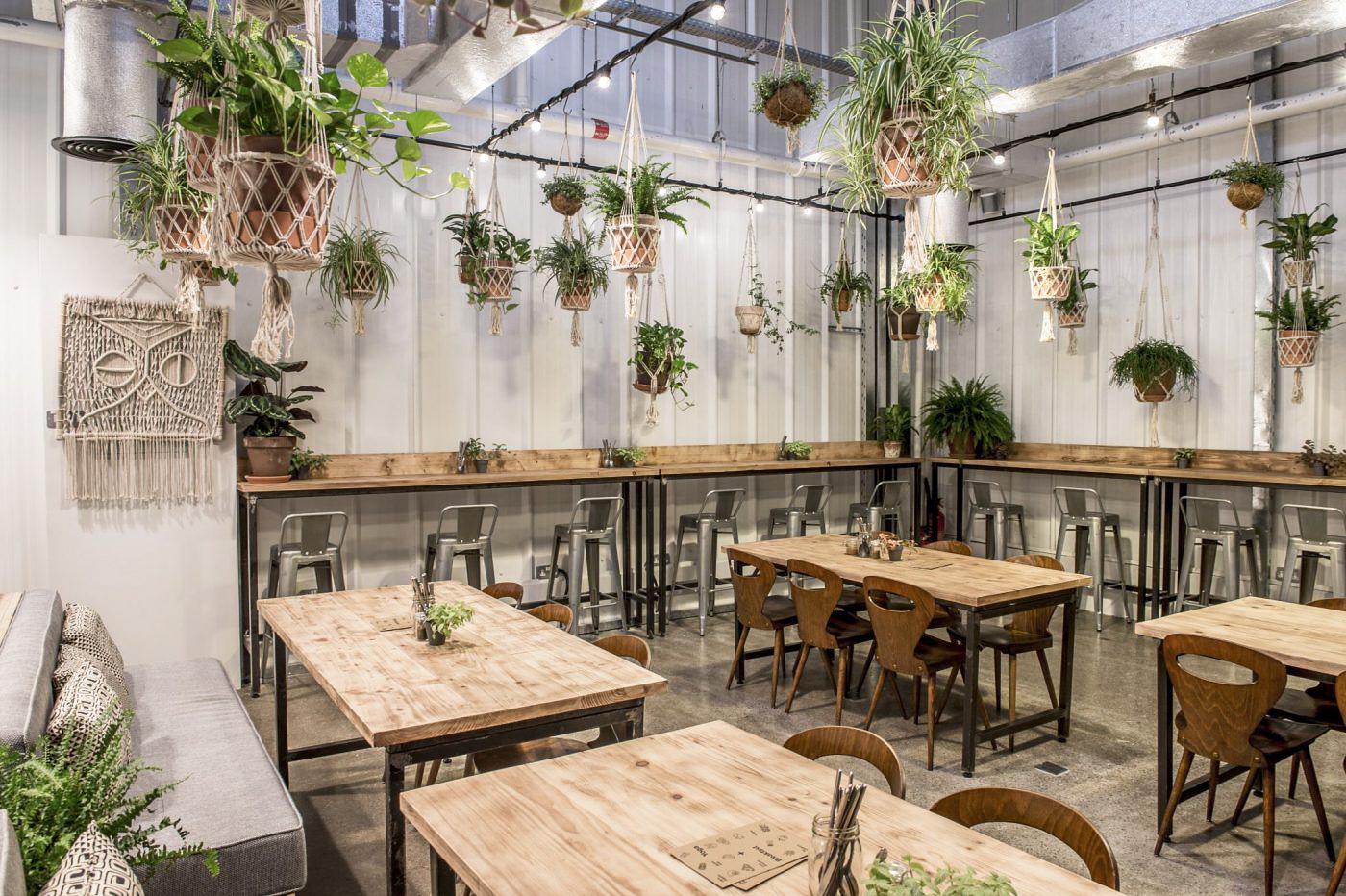 Café Wild & the Moon, tables de bois et plantes suspendus