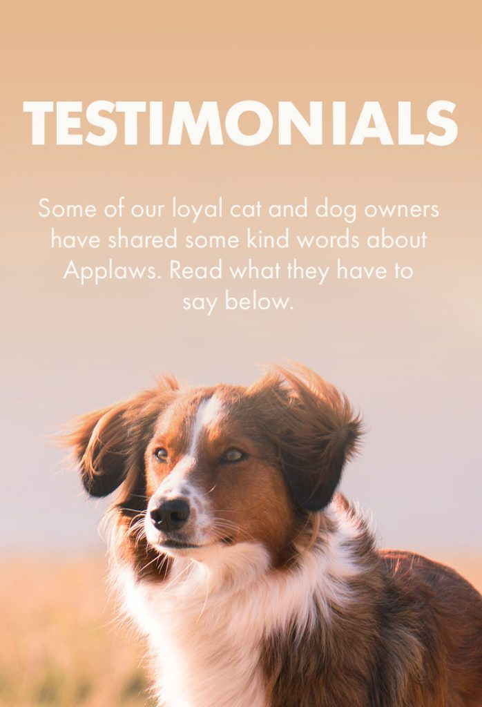 Testimonials - Applaws US