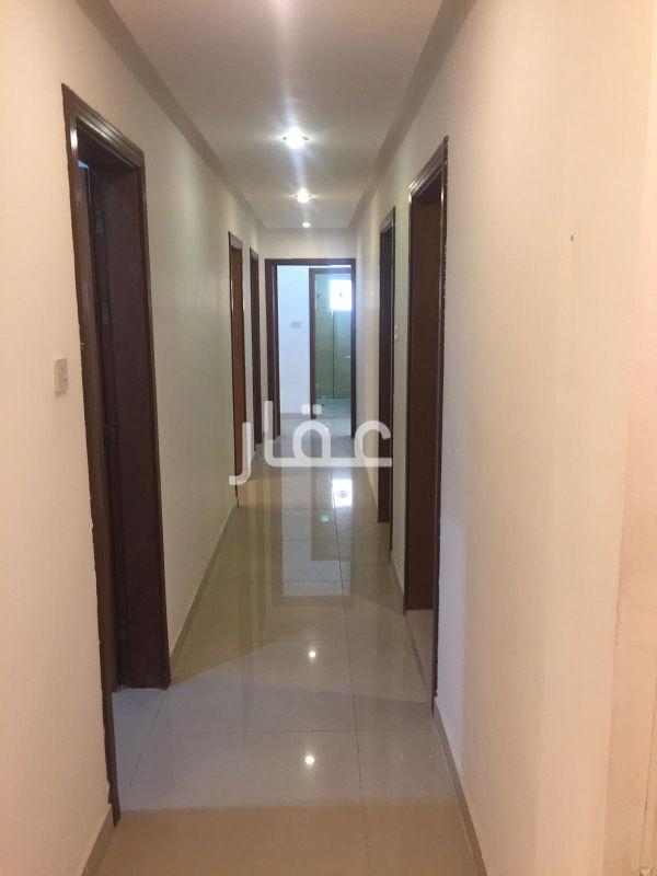 شقة للإيجار فى شارع 5 ، الجابرية 81