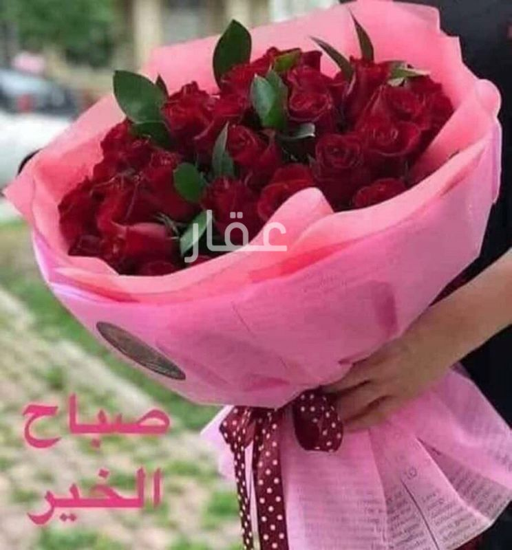 دور للإيجار فى مجمع الملا ، شارع عبدالله المبارك ، حي قبلة ، مدينة الكويت 0