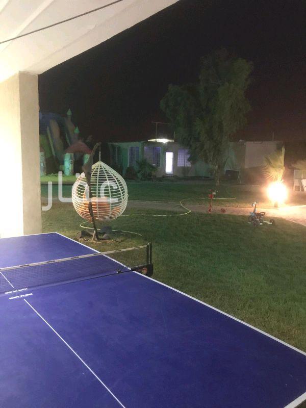 جاخور للبيع فى دولة الكويت 21